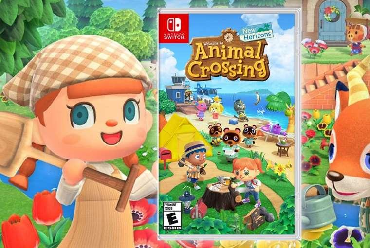 Animal Crossing New Horizons Box
