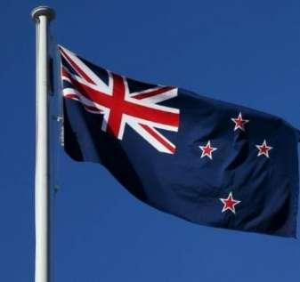 Statistik Perjudian Online NZ Selama Terkunci