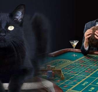 Gambar Kucing Hitam dan Pria Kesal di Meja Roulette